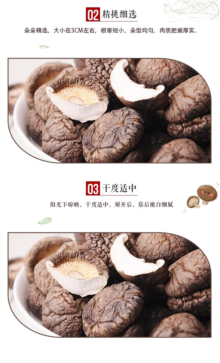 香菇_05.jpg